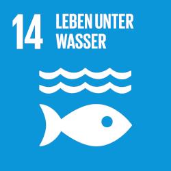Leben unter Wasser - Ziel 14