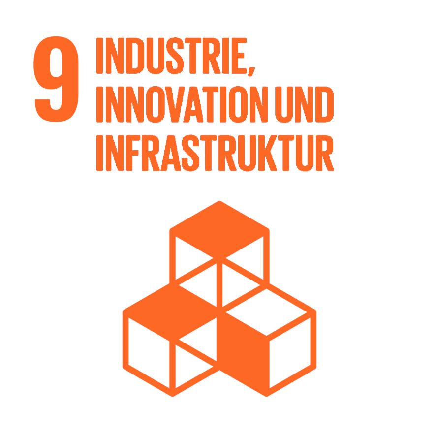 Industrie, Innovationen und Infrastruktur - Ziel 9